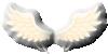 Icarus Wings.png