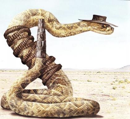 Mr. Rattlesnake
